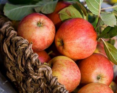 Äpplen.jpg